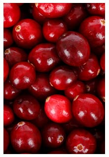 Free Apple Cranberry Salad recipe from Mountain View Country Market in Tennessee